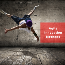Laden Sie das Bild in den Galerie-Viewer, agile Innovation Methods (EN)