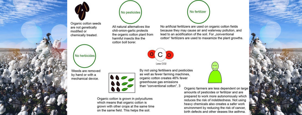 What is the difference between organic and non-organic cotton?