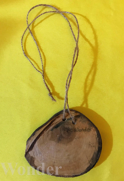 Wooden Toucan Necklace - Anke Wonder