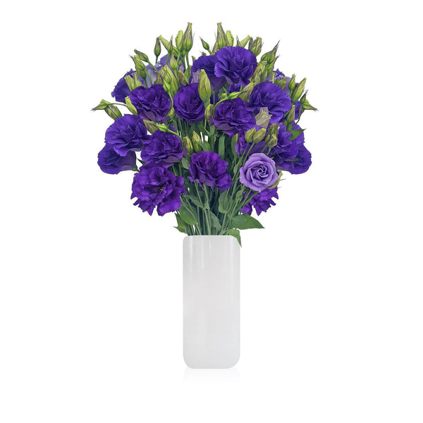 Lisianthus Purple Pack per 80 stems - Bloomsfully Wholesale Flowers