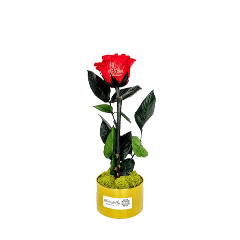 Customized Preserved Rose