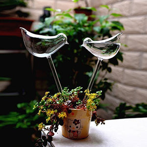 Self-Watering Plant Glass Bulbs 2pcs - Narvay.com