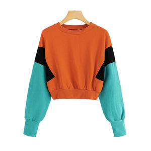 Block Round Neck Crop Sweatshirt Women