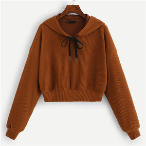 Drop Shoulder Textured Hooded Sweatshirt