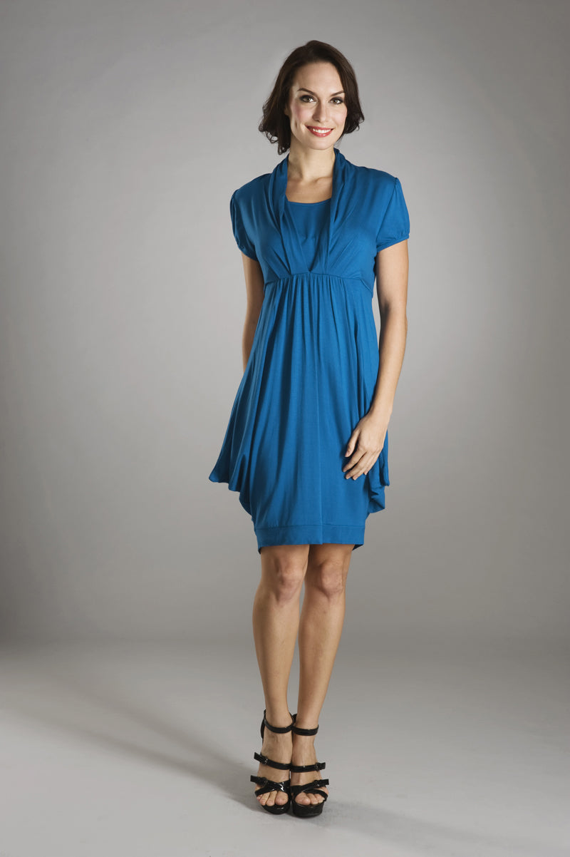 Maternalove Nadya Blue Nursing Dress