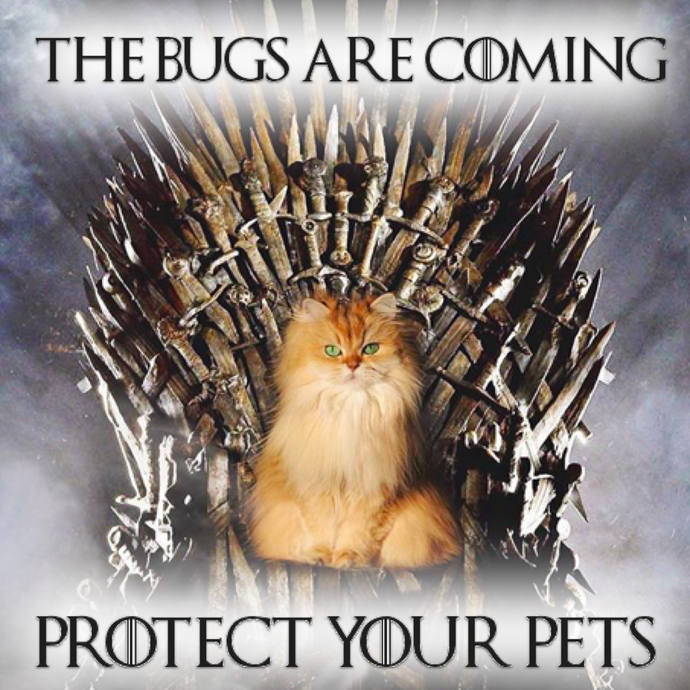 As Spring Approaches, Protect Your Pets