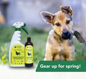 Natural Flea & Tick Spray for Pets