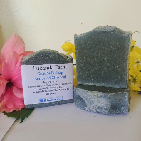 Activated Charcoal Goat Milk Soap - Unscented