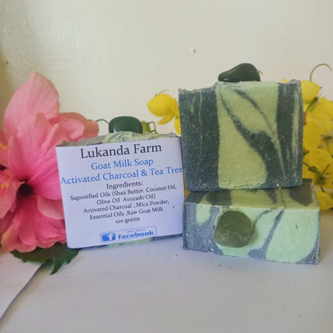 Activated Charcoal & Tea Tree Goat Milk Soap