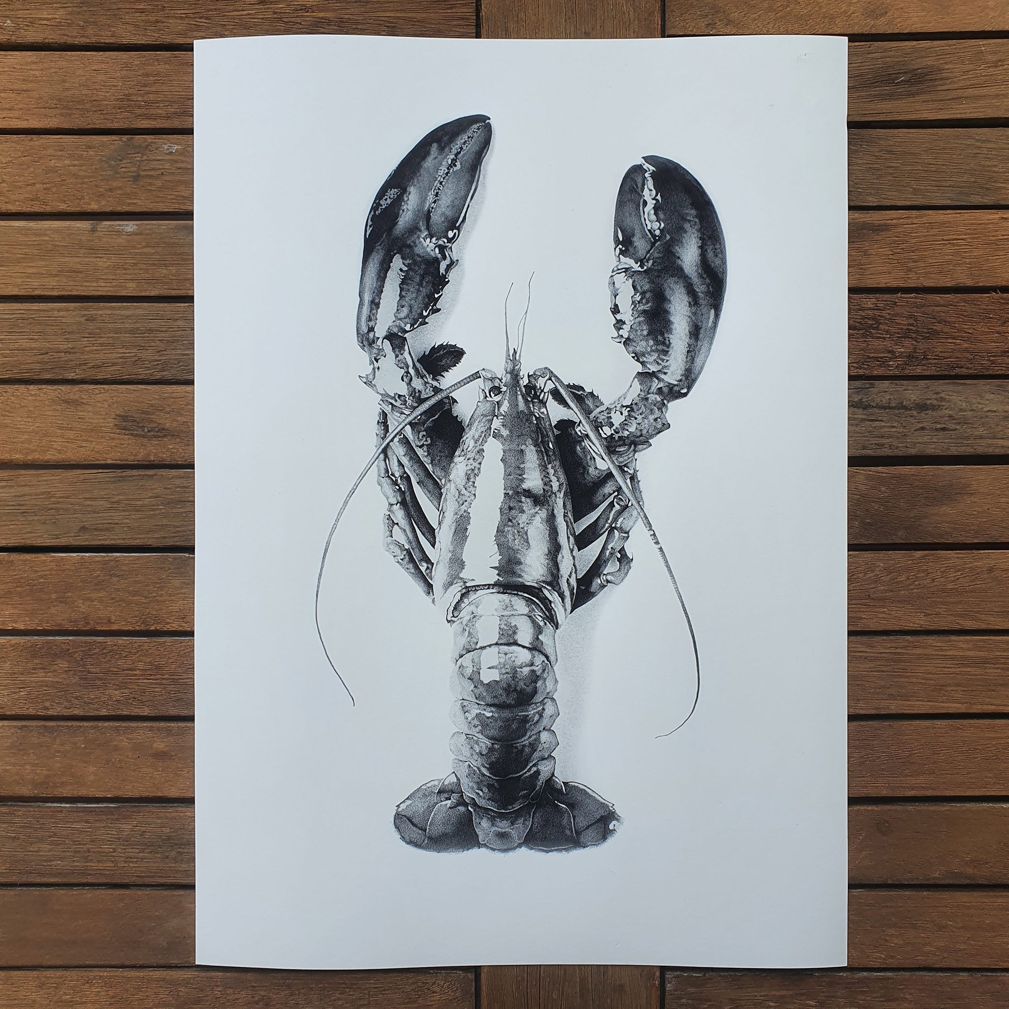Lobster Romance - Limited Edition Prints