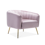 Luxe Velvet Accent Chair - Lifelook Store
