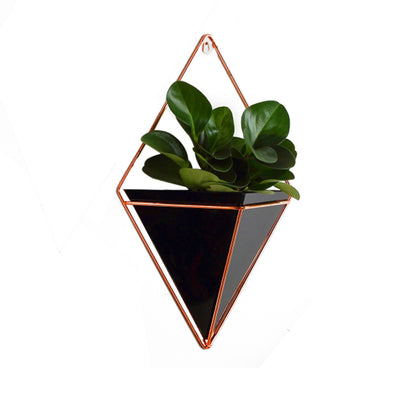 Small Hanging Wall Planter - Lifelook Store