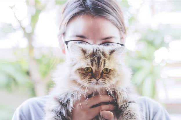 SCIENTIFIC BENEFITS OF BEING A CAT OWNER