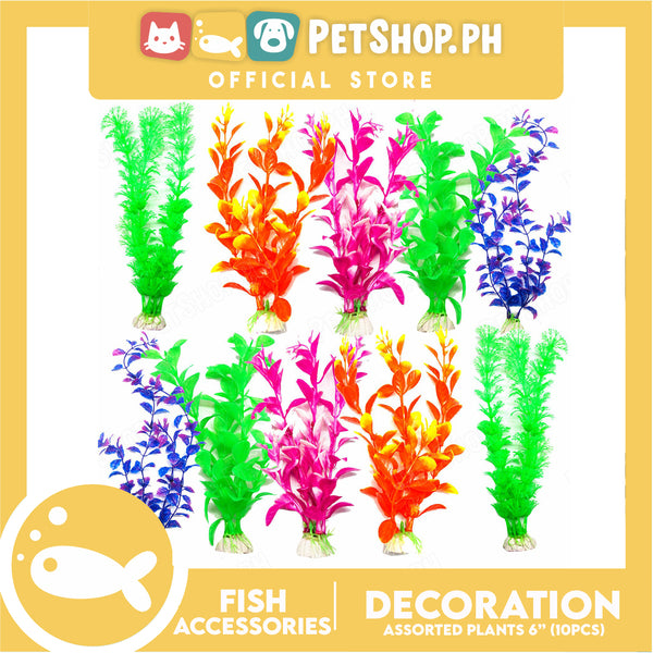 "Plants 6"" 10pcs Assorted"