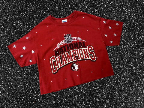 FSU Rhinestone/Star Crop Top Sz Medium