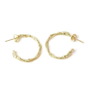 Gold Twisted Twig Hoops on white background