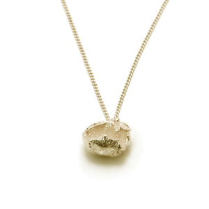 gold hazelnut necklace on white background
