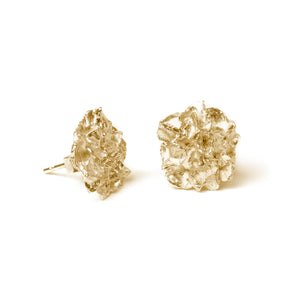 Gold Hedgerow Flower stud earrings on white background