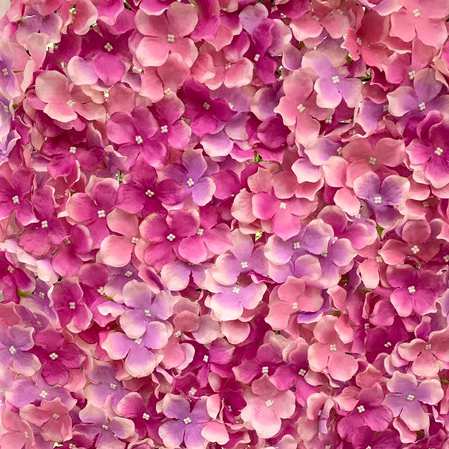 Pink Flower Wall Hire | Event Hire Wellington