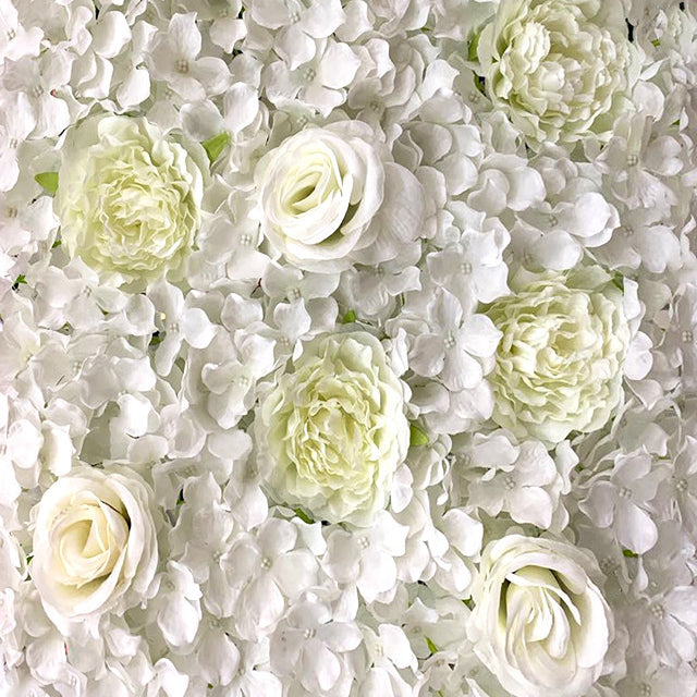 White Flower Wall Hire | Event Hire Wellington