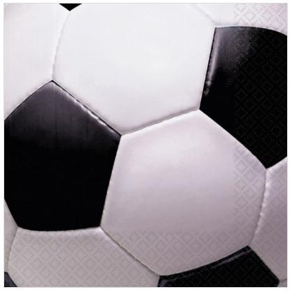 Soccer Fanatic Ball Napkins - Lunch