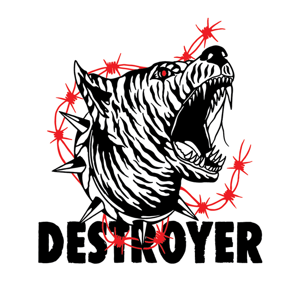 Destroyer Design