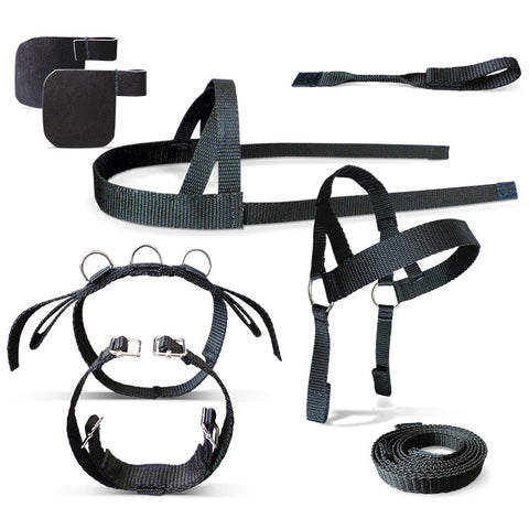 Driving Harness