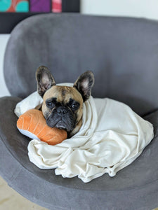 Organic Cotton Blanket French Bulldog