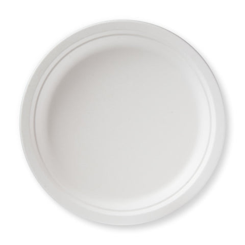 "10"" Bagasse Dinner Plate - 50 plates"