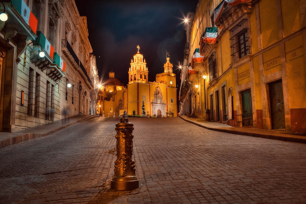 pet-friendly-guanajuato