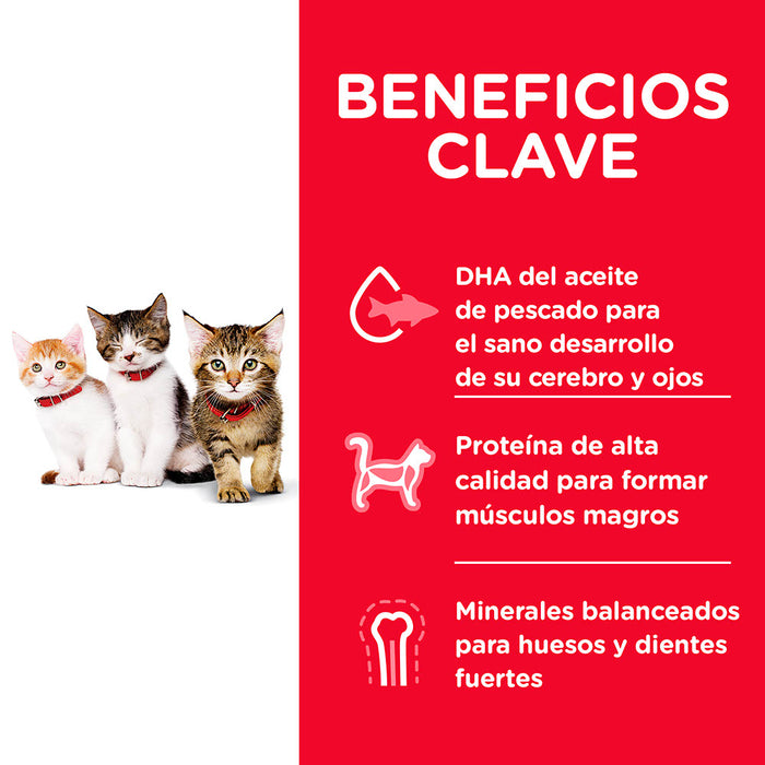 Kitten Healthy Development*