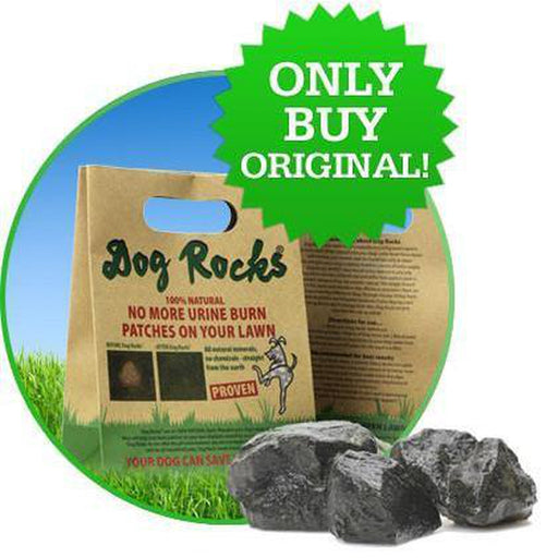 Dog Rocks®: Anti Manchas de Pasto Dog Rocks