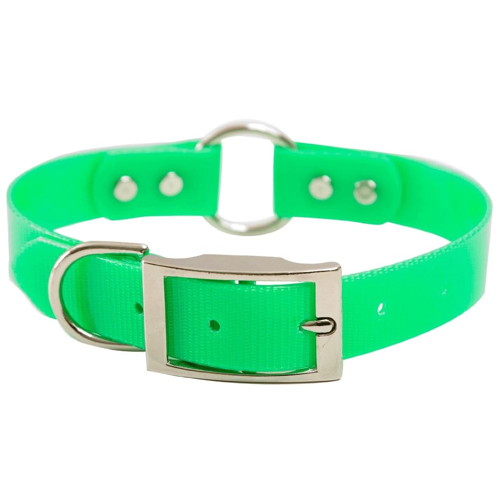 "Collar de Biothane 24"" x 1"" Mendota Products"