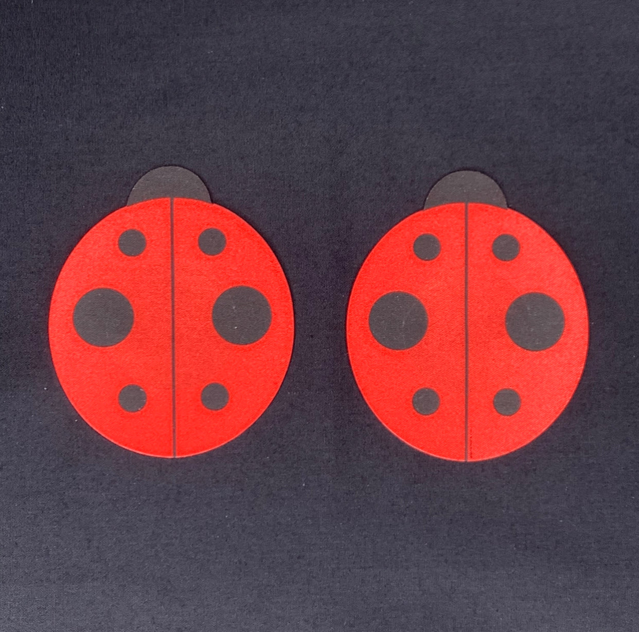 Lady Bug Pasties