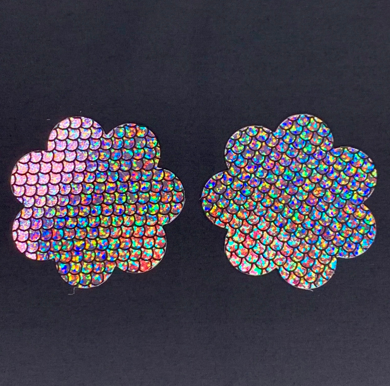 Holographic Flower Pasties