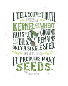 John 12:24 Produces Many Seeds