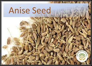 Anise Seed - 5 ml