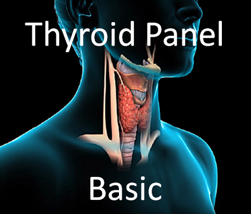 Thyroid Panel, Basic -Includes consult fee to review results.