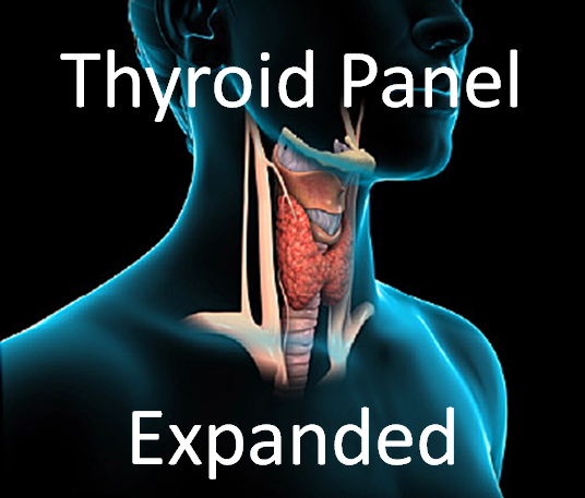 Thyroid Panel, Expanded + Functional Report -Includes consult fee to review results.