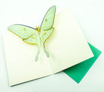 Luna Moth Birthday Pop-Up Card
