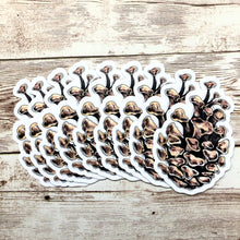 Load image into Gallery viewer, Pinecone - Vinyl Sticker