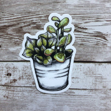 Load image into Gallery viewer, Succulent - Vinyl Sticker