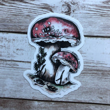 Load image into Gallery viewer, Mushrooms - Vinyl Sticker
