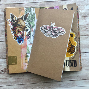 Journal Insert
