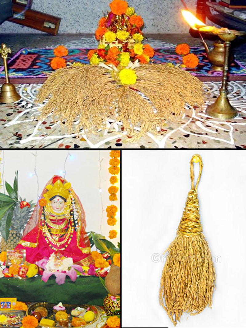 Decorative Paddy Bunch for Puja (Dhana Menta)