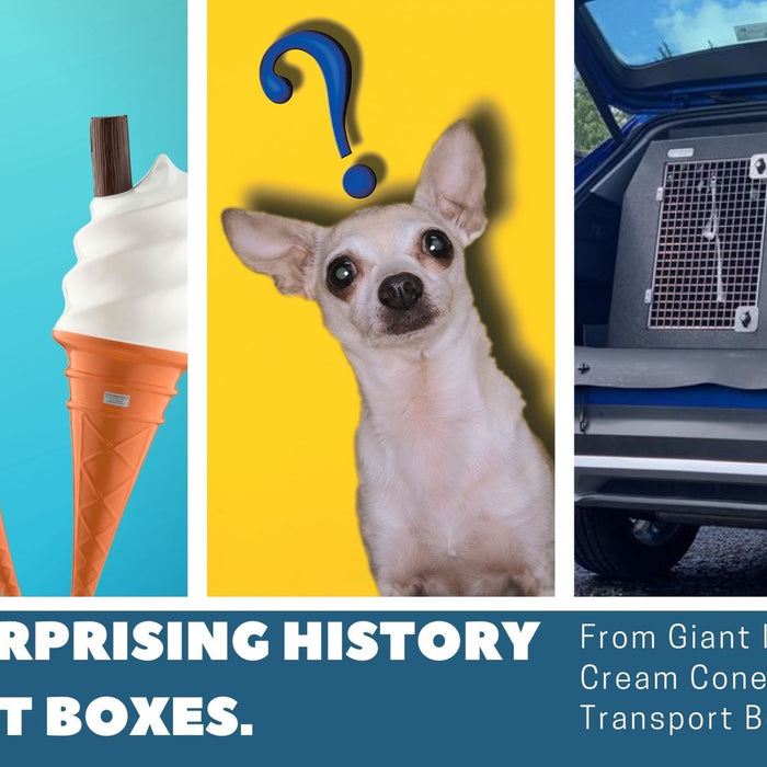 From Giant Ice-Cream Cones to Dog Transport Boxes- A Surprising History of DT Boxes.