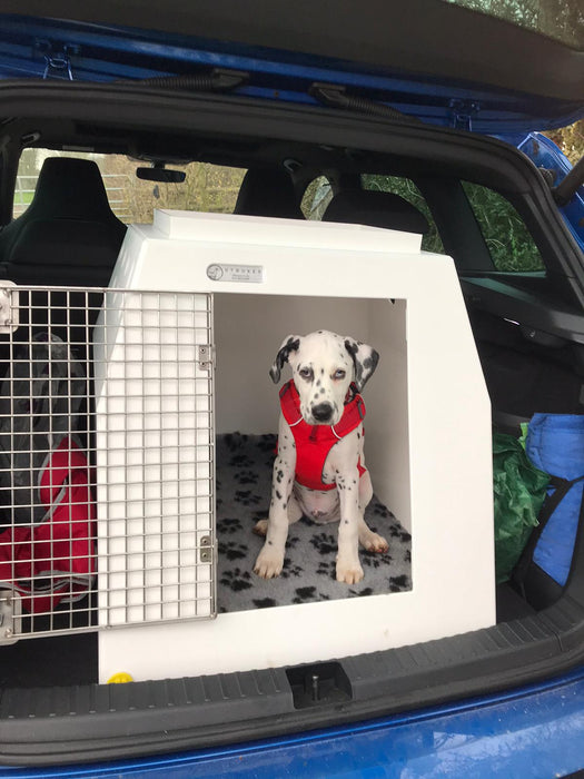 DT Box Dog Car Travel Crate- DT 6 DT Box DT BOXES