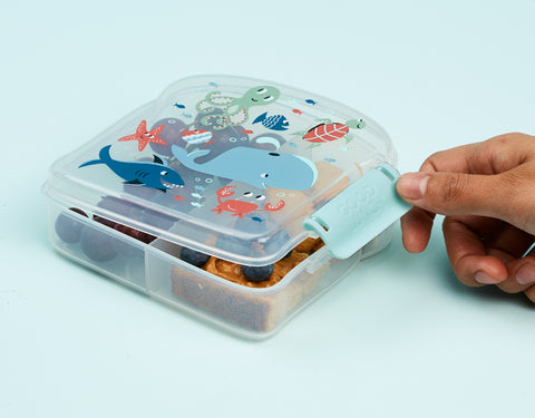 Ore Good Lunch Sandwich Box Ocean