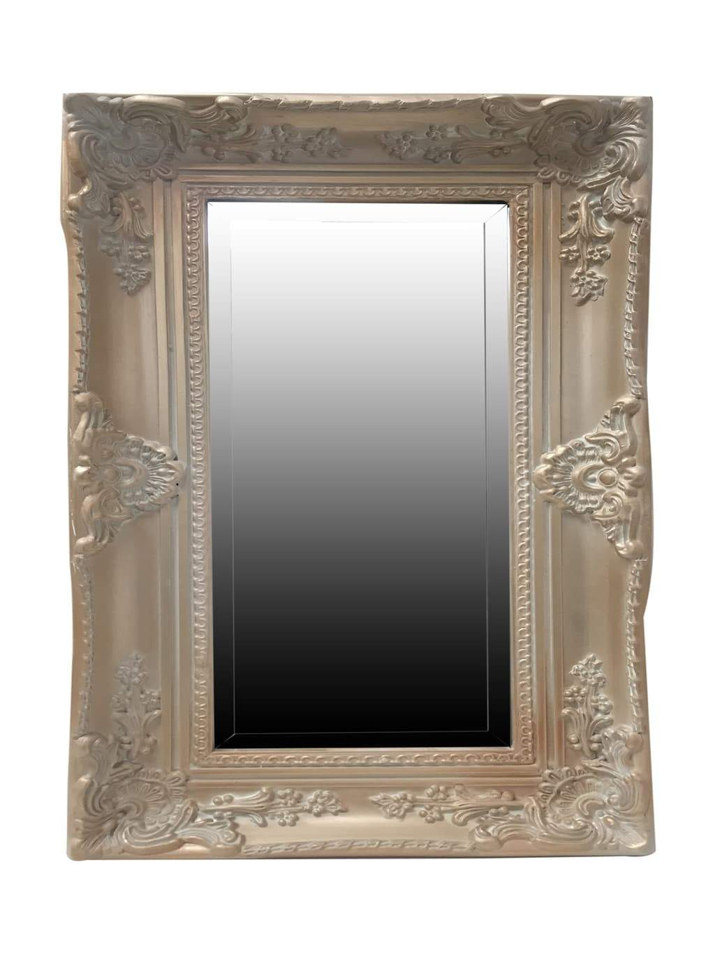 Wall Mirror in Gold Vintage Frame