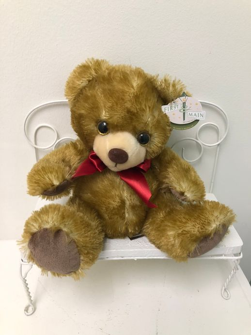 Teddy Bear (in various colors & sizes)